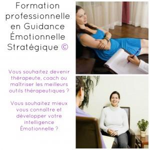 Formation en Guidance émotionnelle stratégique