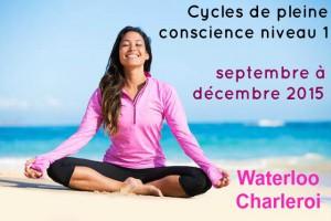Cycles de pleine conscience niveau 1