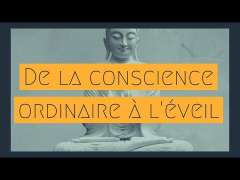 De la conscience à l'éveil – Au delà du Moi pour trouver la liberté