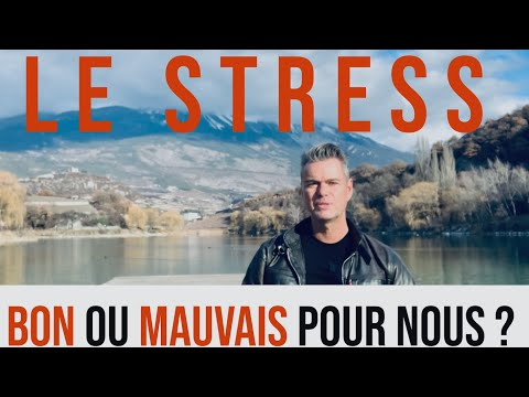 Le stress : bon ou mauvais pour notre santé ?